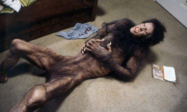 An American Werewolf In London + Quiz